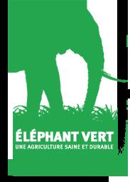 elephant vert
