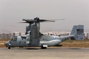 osprey in morocco dvids
